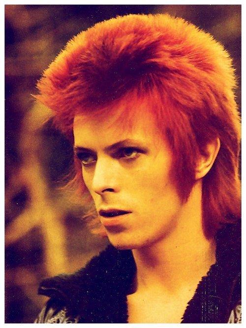 David-Bowie-david-bowie-14357126-500-668